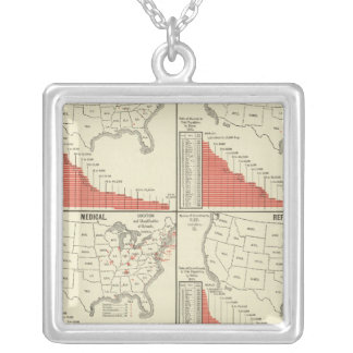 Statistics for special schools silver plated necklace