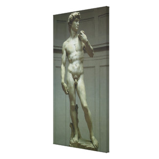 Statue of David by Michelangelo Canvas Print