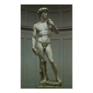 Statue of David by Michelangelo Poster