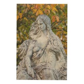 Statue Of The Loreley Mermaid Wood Print