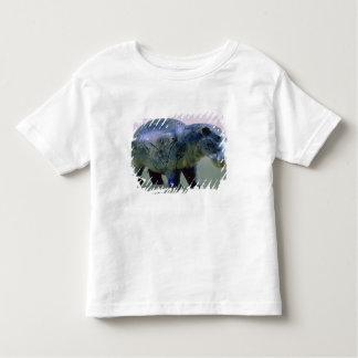 Statuette of a hippopotamus toddler T-Shirt