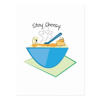 Stay Cheesy Postcard