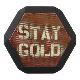 Stay Gold Speaker