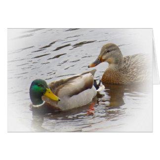 Staying Close - Mallard Duck Pair Card