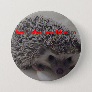 std hedgehog button