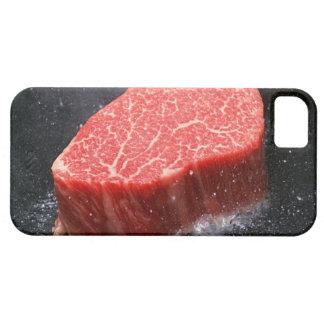 Steak iPhone 5 Case