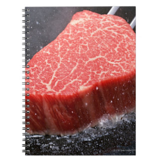 Steak Notebooks