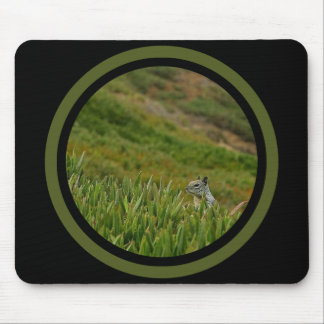 Stealth Squirrel - Multi Frame Mouse Mat