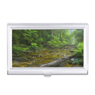 Steam In Forest, The Knysna-Amatole Montane Business Card Holder