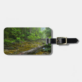 Steam In Forest, The Knysna-Amatole Montane Luggage Tag