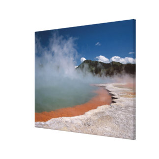 Steam rising from Champagne Pool at WAI-O-TAPU Gallery Wrapped Canvas