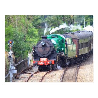 Steam Train at Picton Postcard