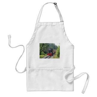 Steam train standard apron