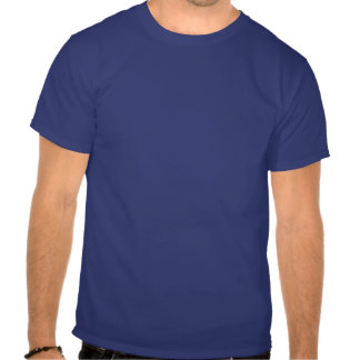 Steamboat Springs Colorado blue goggle tee