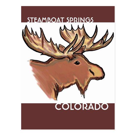 Steamboat Springs Colorado brown moose postcard