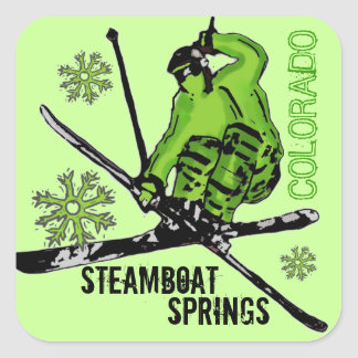 Steamboat Springs Colorado green skier stickers