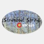 Steamboat Springs Colorado sticker