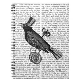 Steampunk Crow 2 Notebooks