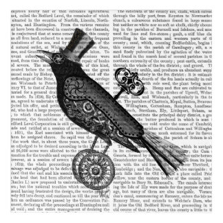 Steampunk Crow Acrylic Wall Art