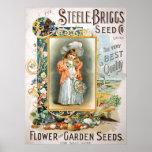 Steele Briggs Poster