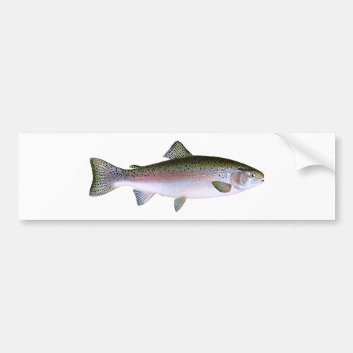 Steelhead Rainbow Trout Fishing  Logo Bumper Sticker