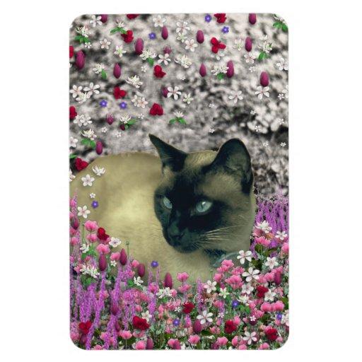 Stella in Flowers I – Chocolate Cream Siamese Cat Magnet