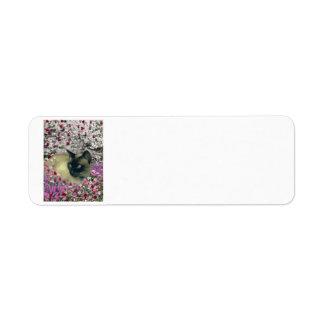 Stella in Flowers I – Chocolate Cream Siamese Cat Return Address Label