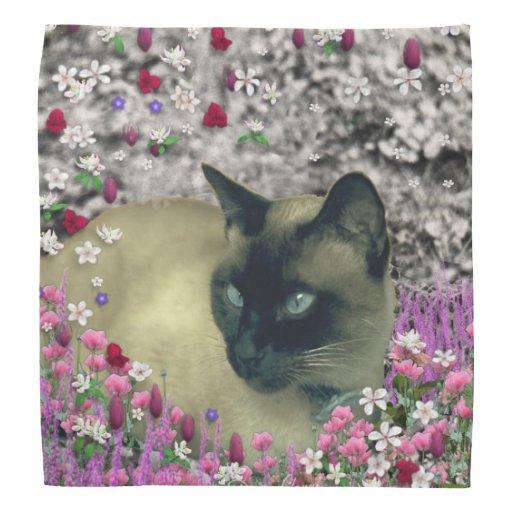 Stella in Flowers I, Chocolate & Cream Siamese Cat Kerchief