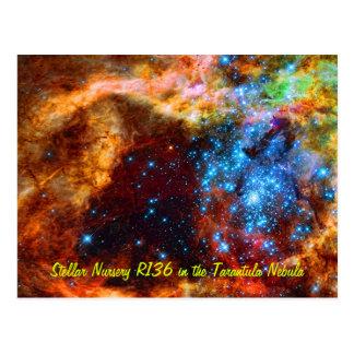 Stellar Nursery R136 in the Tarantula Nebula Postcard