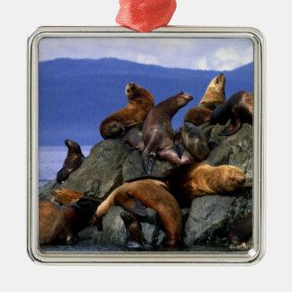 Stellar sea lions Alaska; USA Christmas Ornament