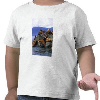 Stellar sea lions Alaska; USA T Shirt