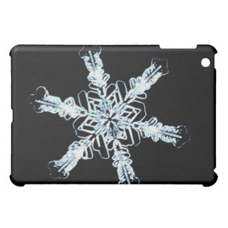 Stellar snow crystal iPad mini cover