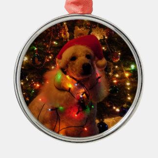 Stella's Christmas Christmas Ornament
