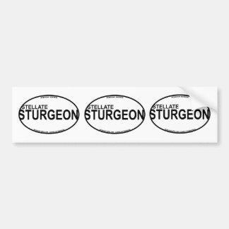Stellate/Starry Sturgeon Euro Stickers