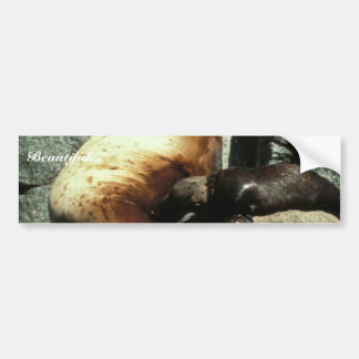 Steller Sea Lion and Pup Bumper Stickers