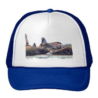 Steller Sea Lions Trucker Hat
