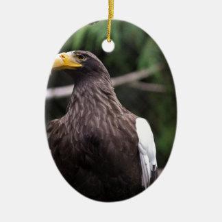 Steller's Sea Eagle Christmas Tree Ornaments