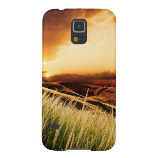 stems of rush at the sunset galaxy s5 cases