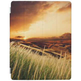 stems of rush at the sunset iPad cover
