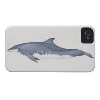 Steno iPhone 4 Case