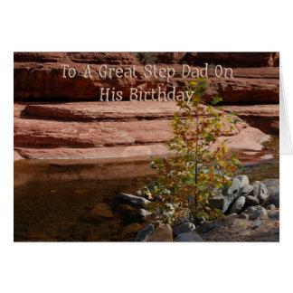 Step Dad Birthday Card