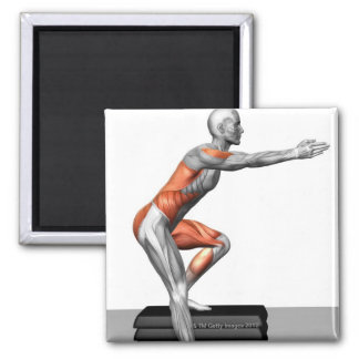 Step-Down Exercises Square Magnet