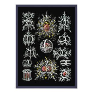 Stephoidea on Black Background 14 Cm X 19 Cm Invitation Card