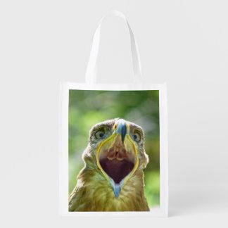 Steppe Eagle Head 0013 01, screaming