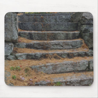 Steps covered in pine needles, White Mountain Mouse Pad