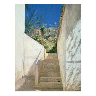 Steps in a Garden, Algeria, 1883 Postcard