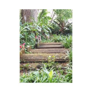 Steps in the Hawiian Botanical Garden Canvas Print