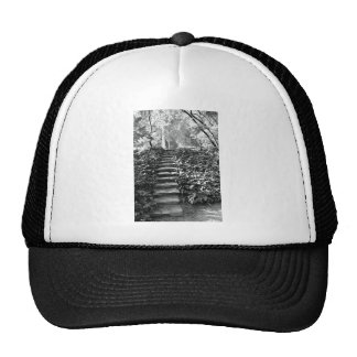 Steps in the Nature Trucker Hat