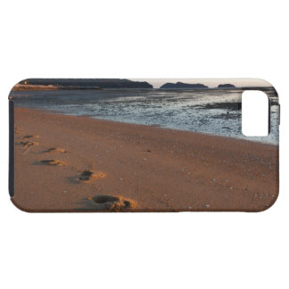Steps in the sands at sunrise iPhone 5 cover