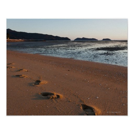 Steps in the sands at sunrise poster